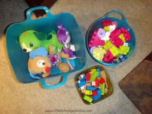 Stuffed Animals and Blocks