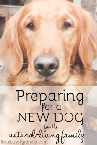 Preparing for a New Dog for the Natural Living Family