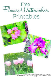 Free Flower Watercolor Printables! by Little Bits of Granola