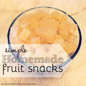 Simple Homemade Fruit Snacks - by Little Bits of Granola